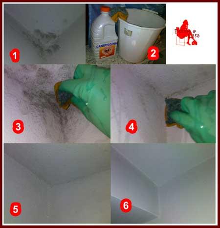 Eliminare muffa candeggina boiserie in ceramica per bagno - Muffa bagno candeggina ...
